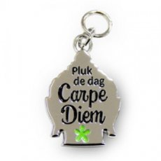 Charms for You hangertje - Carpe Diem Boeddha