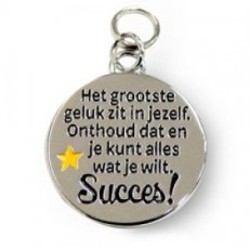Charms for You hangertje - Succes rond