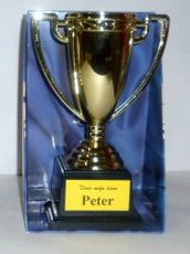 Gold Cup 'Beste Peter'